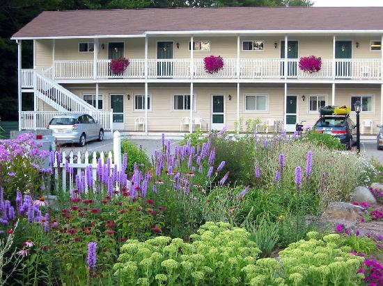 Wilson Lake Inn: Just one of the gardens