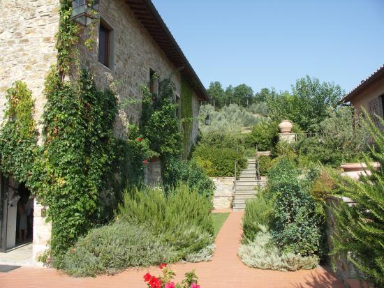 Photo of Terre di Baccio Greve