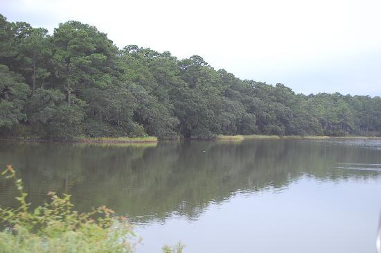 Botany Bay Ecotours : Botany Bay