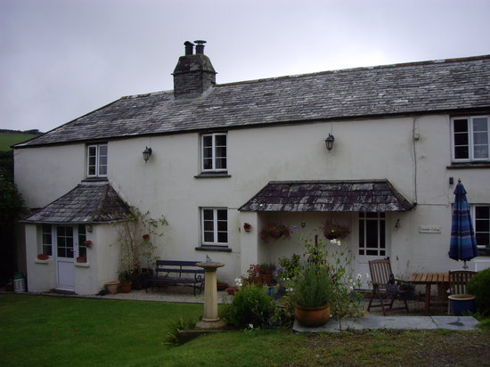 Lavender Cottage: The cottage