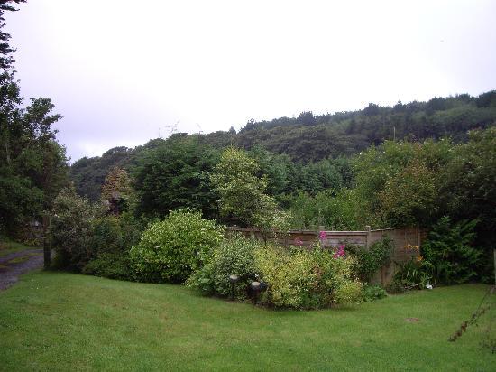 Lavender Cottage: Le Jardin