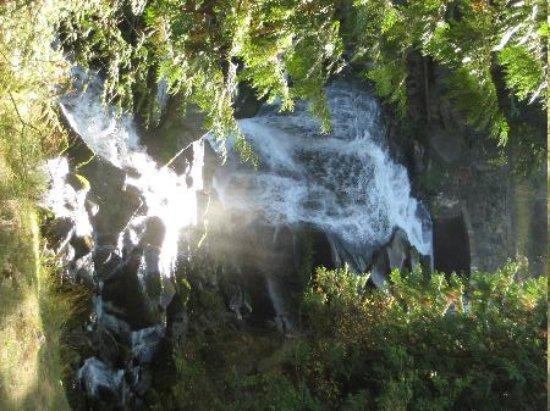 Falls at Nelson at park