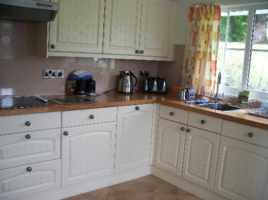 Plas Talgarth Holiday Resort: The well equipped kitchen