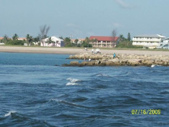 皇家客棧海灘酒店照片