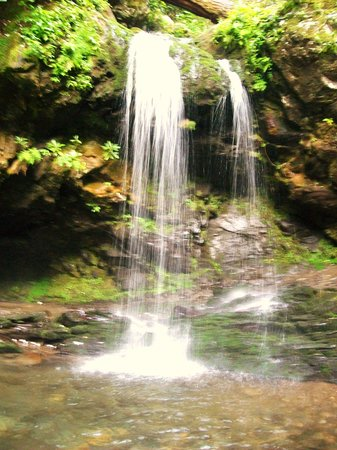 Great Smoky Mountains Nationalpark, TN: Grotto Falls