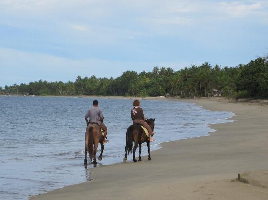 Uprising Beach Resort: great beach for riding; too bad the horses are sad and sick.