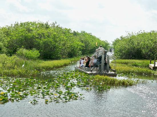 Blue Moon Hotel, Autograph Collection: Everglades