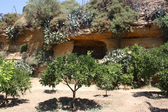 Agrigento, Italy: Giardino della Kolymbetra