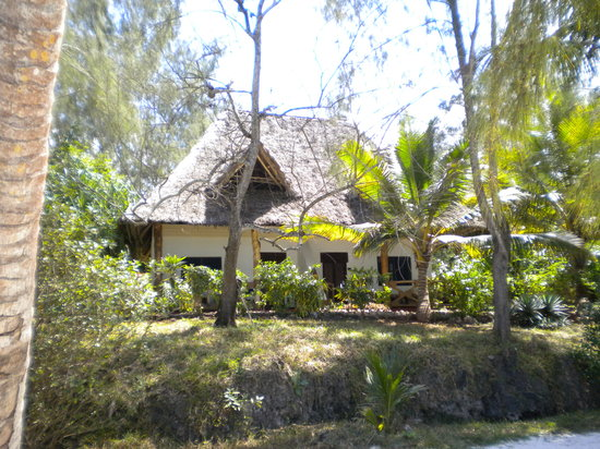 Pongwe Beach Hotel: Beach rooms