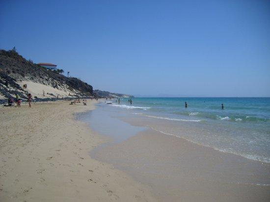 TUI MAGIC LIFE Fuerteventura: la spiaggia dell'hotel con bassa marea