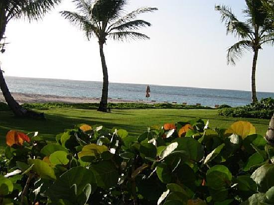 Tortuga Bay, Puntacana Resort & Club: View from ground floor villa