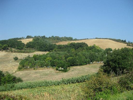 Fiorenzuola di Focara, Italy: Il campeggio