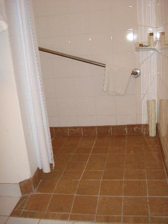Varscona Hotel on Whyte: wheelchair access shower