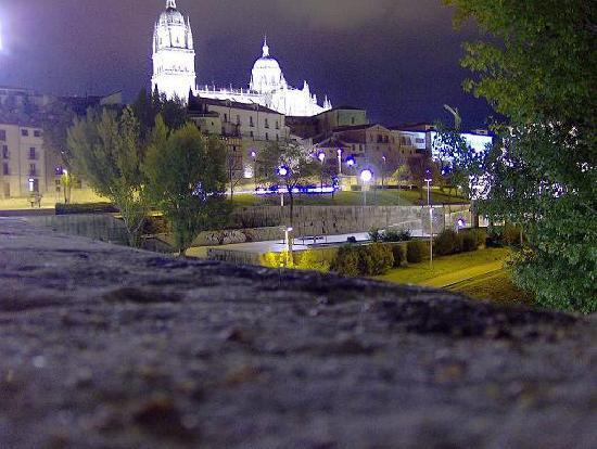 Le Petit Hotel: Catedral de Salamanca