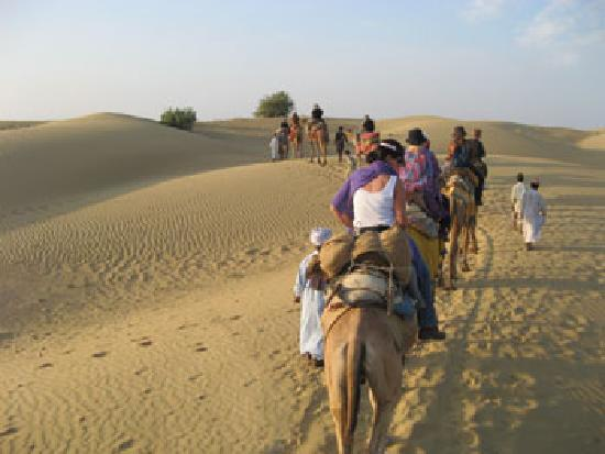 Desert Adventures Camps and Safari: Camel safari