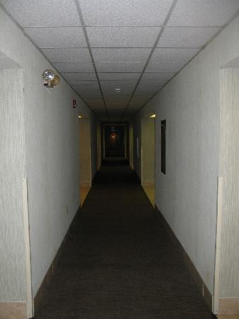 Days Inn & Suites New Buffalo: Hallway - Dimly Lit