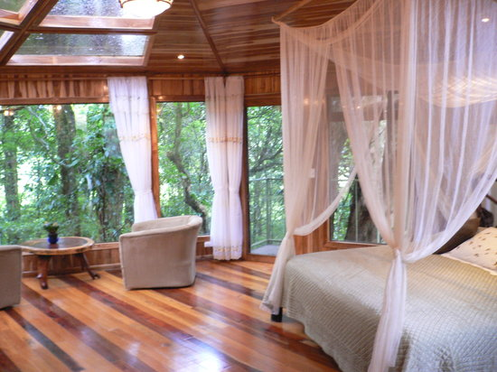 Hidden Canopy Treehouses Boutique Hotel Picture