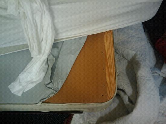 إكستندد ستاي أميركا - ديترويت - آن أربور: Cardboard for a bed