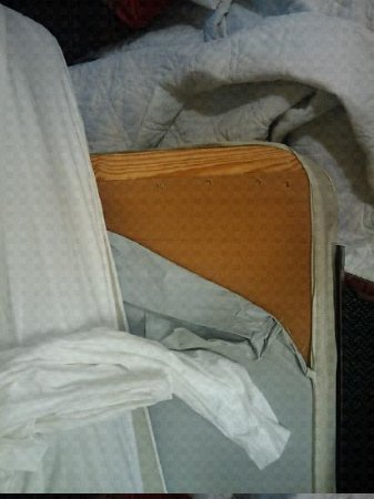 Extended Stay America - Detroit - Ann Arbor - Briarwood Mall: Cardboard for a bed