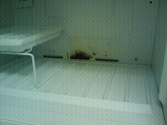 Extended Stay America - Detroit - Ann Arbor - Briarwood Mall: Mold ewwww don't freeze anything