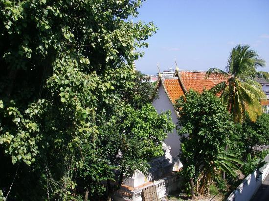 J. Guesthouse : vie from the window 1