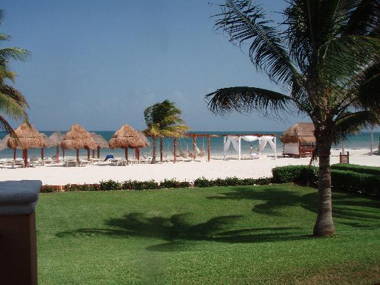 Secrets Capri Riviera Cancun: The Beach at Secrets Capri