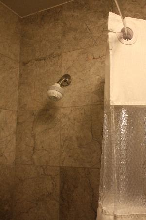 waterpik shower head with curved shower bar and cloth shower curtain ...