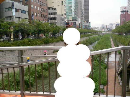 โซล, เกาหลีใต้: コメントを入力してください (必須)