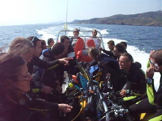 Argeles-sur-Mer, فرنسا: Le bateau, au retour de la réserve