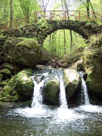 Mullerthal, Luxemburgo: Cascade