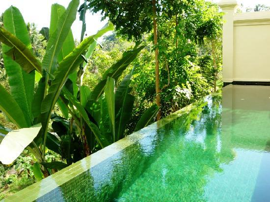 Komaneka at Bisma: Love the private swimming pool~