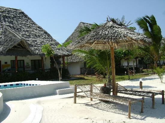Dolphin Beach Resort : Die Zimmer mit Beach Vew