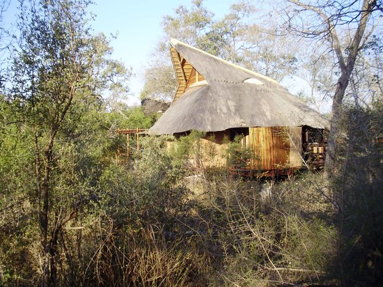 Lukimbi Safari Lodge: il lodge