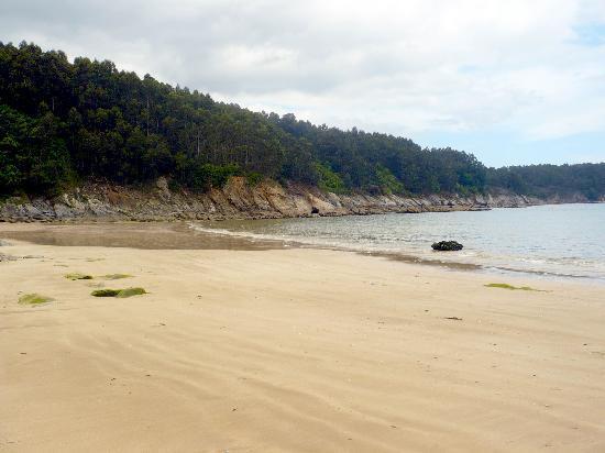 Las Sirenas Apartamentos: Playa de Sacido (desde la playa)