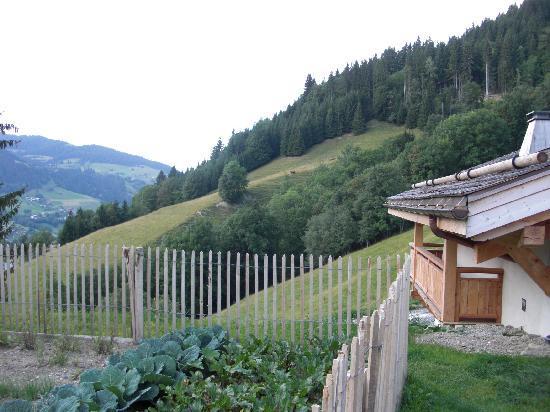 Relais & Chateaux Flocons de Sel : Vue de la terrasse