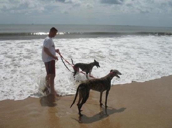 Si Como No Inn: The Greys loved the beach.