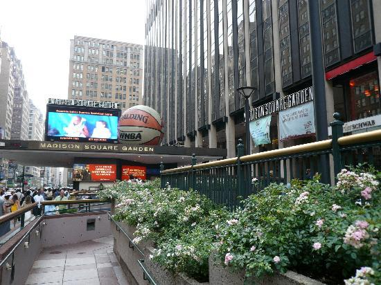Penn Station Picture Of Madison Square Garden