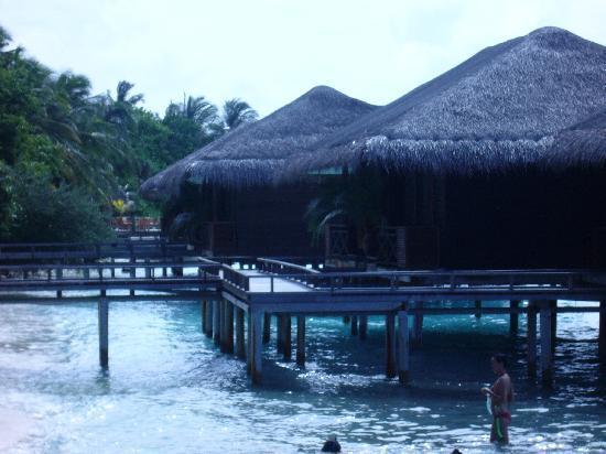 Kuramathi Island Resort: our villa