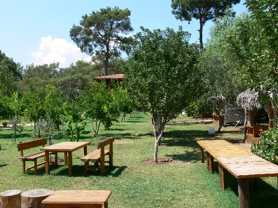 Kumluca, Turki: Lovely garden