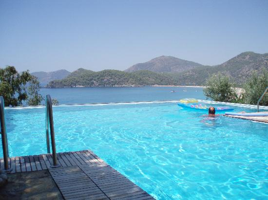 Beyaz Yunus: Pool with a view!