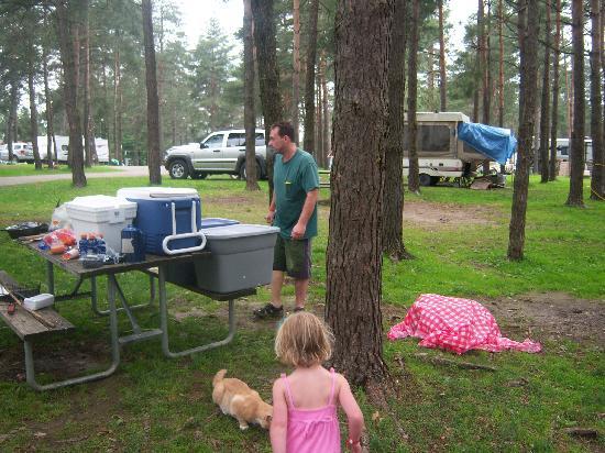 Jellystone Park of Western New York: Campsites kinda close