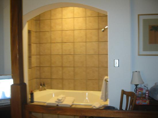 Sierra Grande Lodge & Spa: the tub in our room