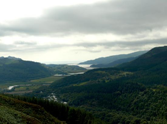 Coedmor Self catering Holiday Cottages: Mawddach and woods near Coedmor