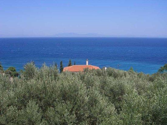Poseidon Hotel Kokkari Samos Greece: Blick vom Balkon der Appartements
