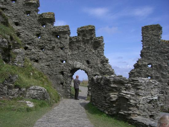 Michael House: Tintagel Castle