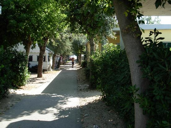 Stork Camping Village: via interna del villaggio