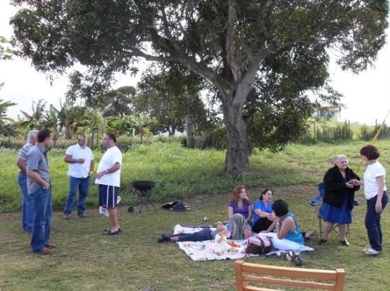 เปอร์โตริโก: A BBQ FOR MEEEEE