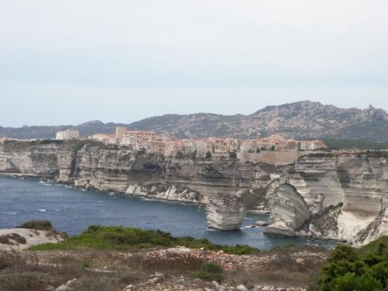 Corsica  Estate 2008