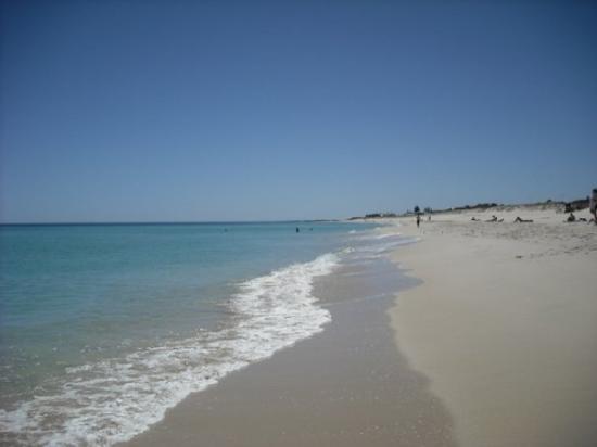 Scarborough Beach: Scarborough