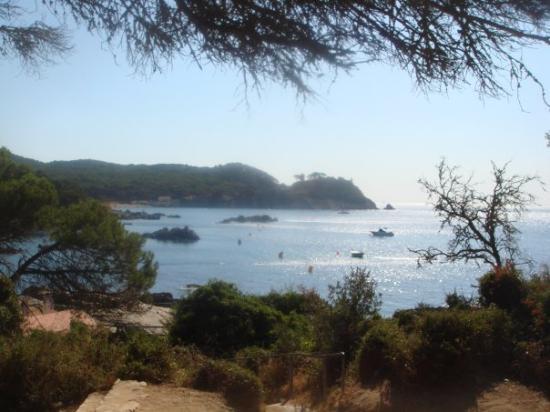 Palamós, España: La Fosca - Palamos  De ces endroits que vous revoyez, en fermant les yeux, lorsque vous voulez